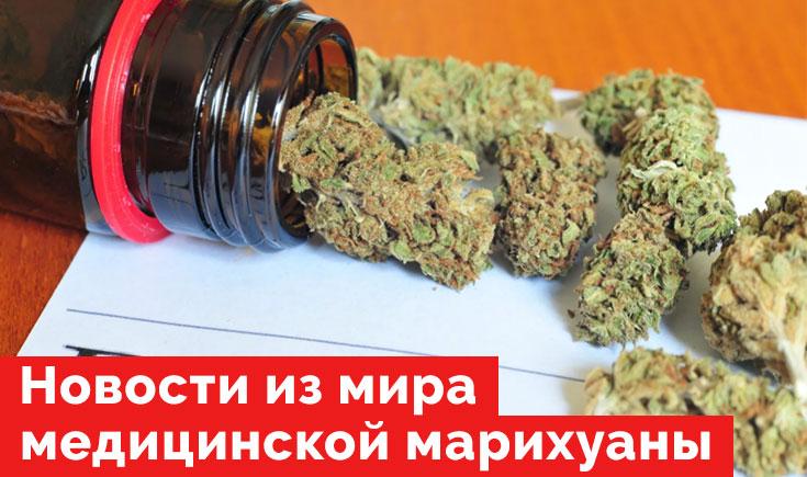 Новости из мира инвестиций в медицинскую марихуану