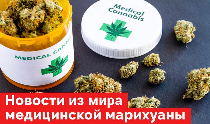 Новости из мира медицинской марихуаны на конец 2019 года