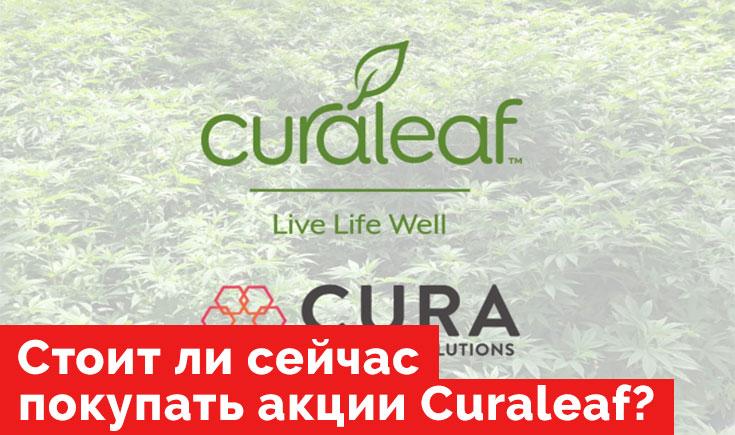 Что ждет акции производителя медицинской марихуаны Curaleaf.